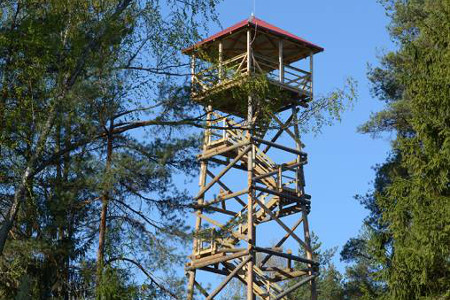 02_Zilo kalnu skatu tornis_450