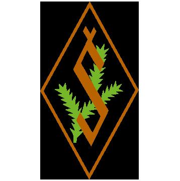Salkone-logo