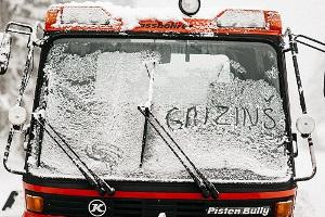 Gaizins_300