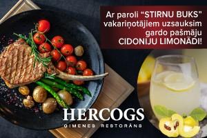 web-baners-hercogs
