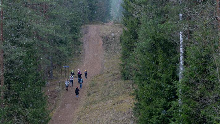 Stirnubuks.lv - 5 vietas, kas Zilajos kalnos būtu jāapskata katram Stirnu bukam